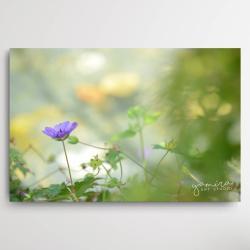 kwiaty do salonu,obraz z kwiatami,magiczny ogrod - Obrazy - Wyposażenie wnętrz