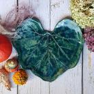 Ceramika i szkło liść dyni,liść ceramiczny,serce,zielony liść