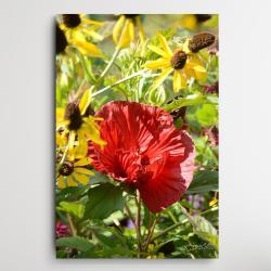 kwiaty do salonu,obraz z kwiatami,kolorowe kwiaty - Ilustracje, rysunki, fotografia - Wyposażenie wnętrz